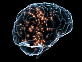 comunicacion señales cerebrales