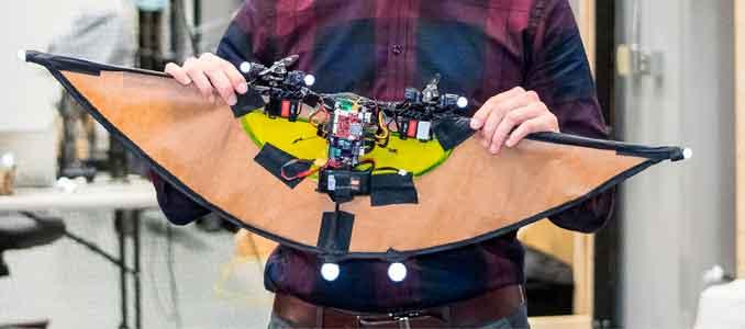 robots autosuficientes